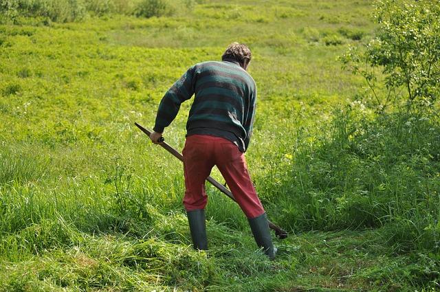 Agrarlandwirtschaft